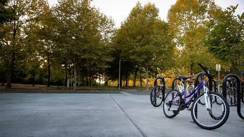 Bicycles outside