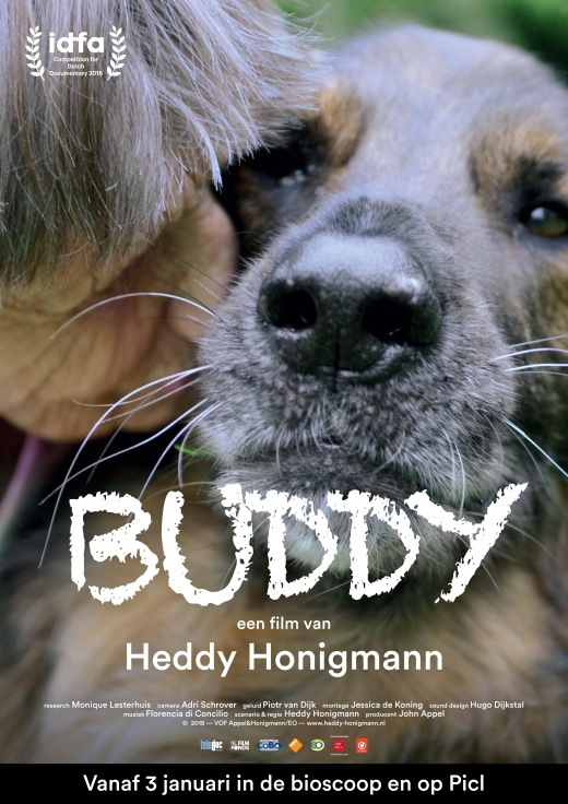 Movie poster for Buddy
