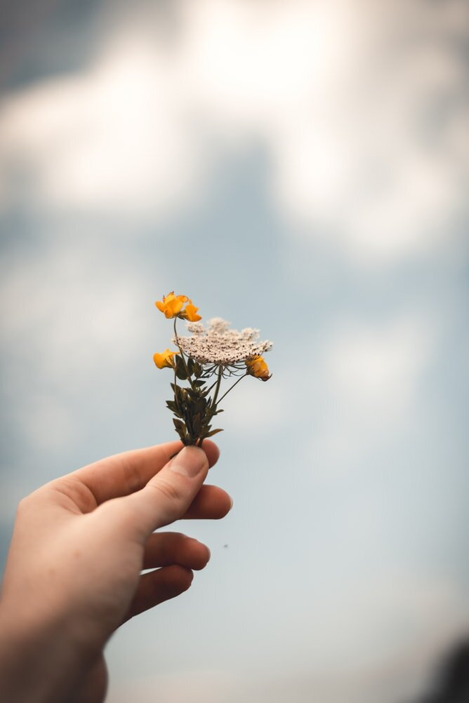 Hand holding a small bunch of colorful flowers with the gloomy sky in the background