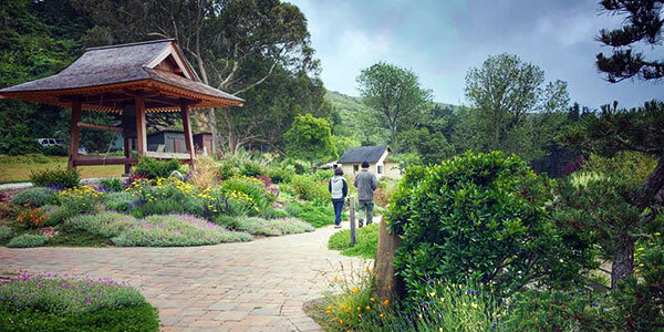 The Green Gulch Farm and Tea Garden featuring people walking on a stone walkways through greenery and architectural structures