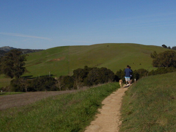 A person walking a dog on a walking trail in Helen Putnam park on a sunny day featuring rolling green hills in the background