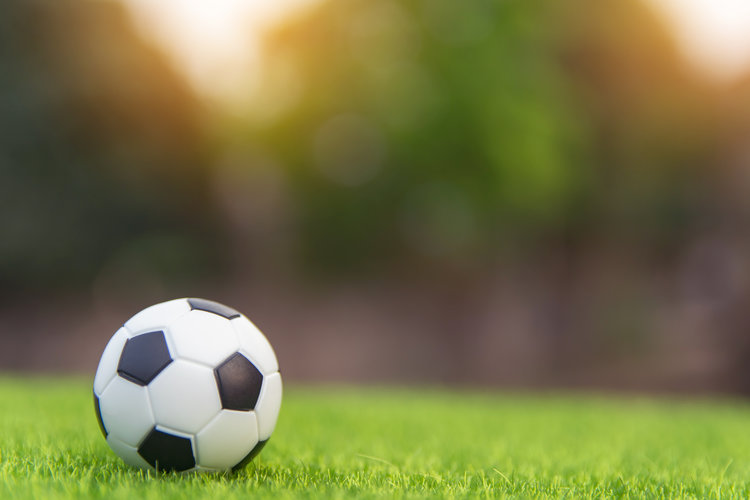 Soccer ball in grassy field