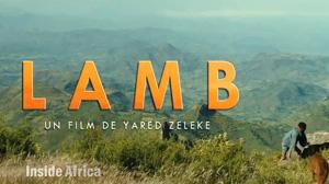 SFI: Lamb