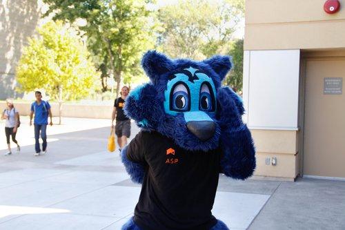 Lobo the Seawolf mascot