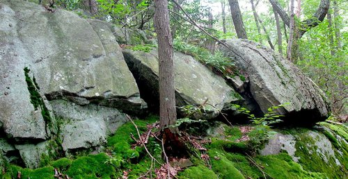 Osborn Preserve boulders