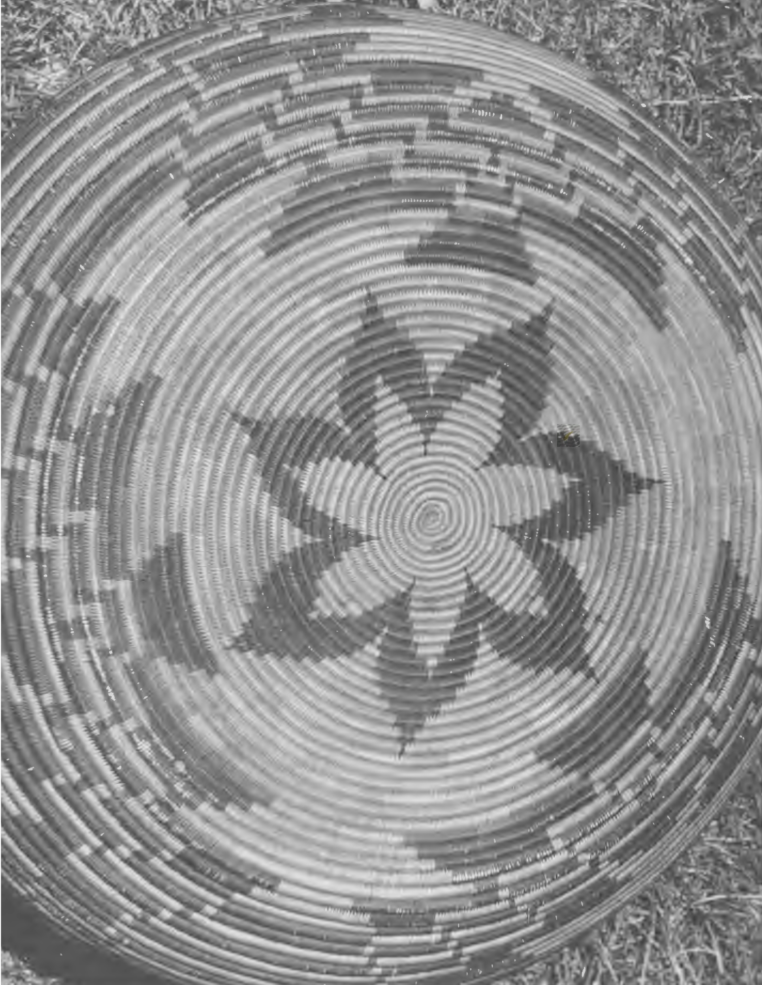 detailed view of Native American basket