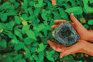 colorful illustration of hand holding birds nest with green foliage in background